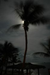 Playing with a shot at night at Little Cayman. Nikon D70.... by Larissa Roorda 